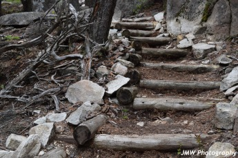 Schoodic Head Trail- Schoodic Point, ME