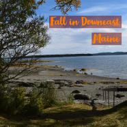 Fall in Downeast Maine