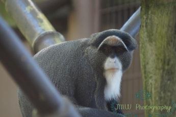 Oregon Zoo- Portland, OR