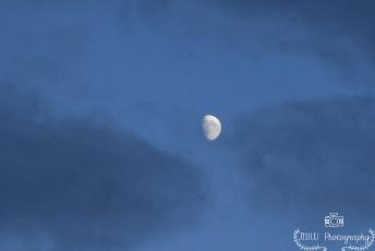 Moon Over Maine